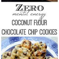 CocoChocoChip Cookies